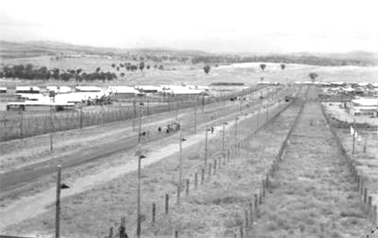 A general view of the space between the four compounds of the Cowra prisoner of war camp.