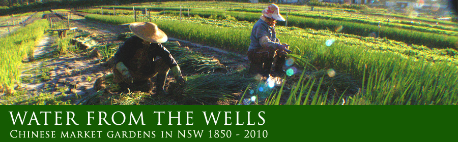 Water from the Wells - Chinese market gardens in NSW 1850-2010