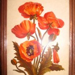 """There was a man who lived in the next Displaced Persons barrack and when I had food left over, I asked him if he wanted it. When it was my birthday, he came with this beautiful painting of red poppies. He painted it himself."""