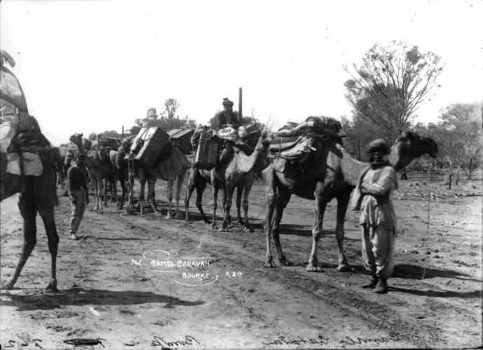Afghan Cameleers at Bourke, c.1890. Courtesy Collection: Powerhouse   Museum